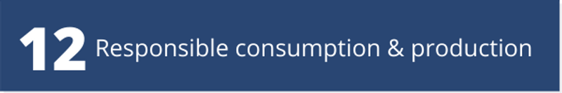 SDG Goal 12 - Responsible consumption and production